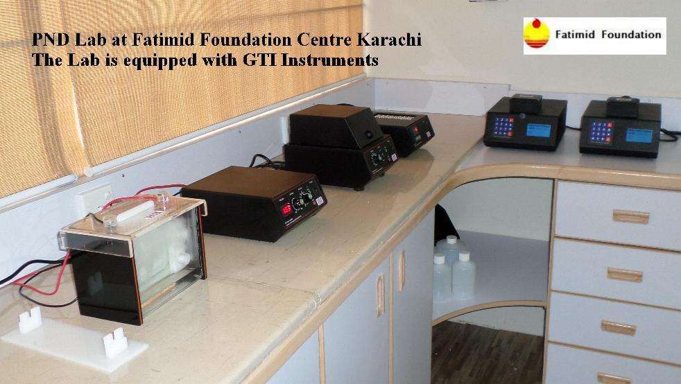 Fatimid PND Lab